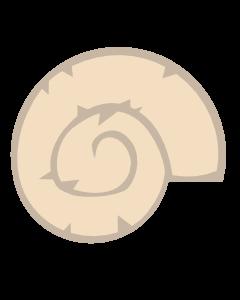 Ammonit Token