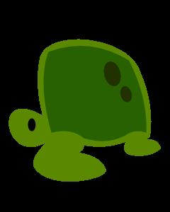 Schildkröte Token